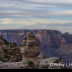 © Kelley J. Heffelfinger PhotoID # 15929386: View of Duck on a Rock