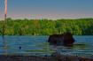 Lake Grubb