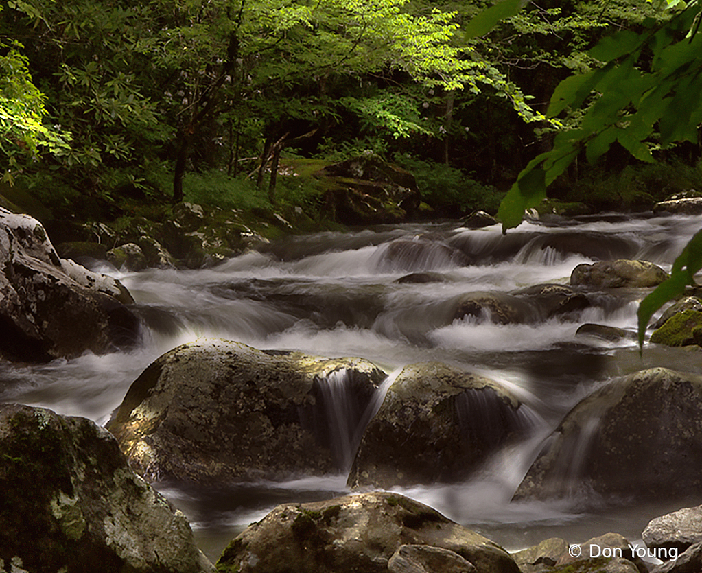 Smoky Mountain Stream - ID: 15930178 © Don Young