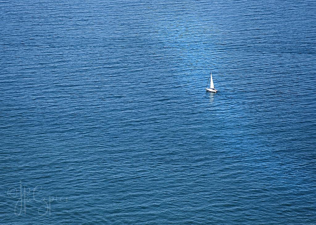 In A Big Sea - ID: 15932058 © Jacquie Palazzolo