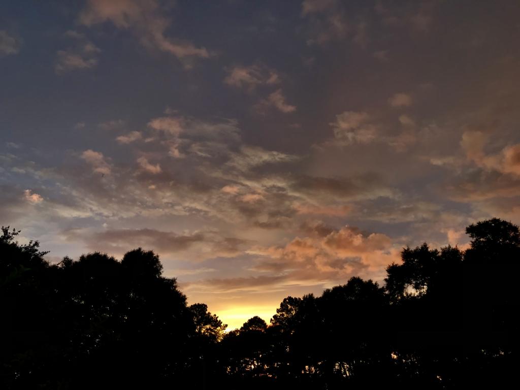 Earth toned sunset - ID: 15934391 © Elizabeth A. Marker