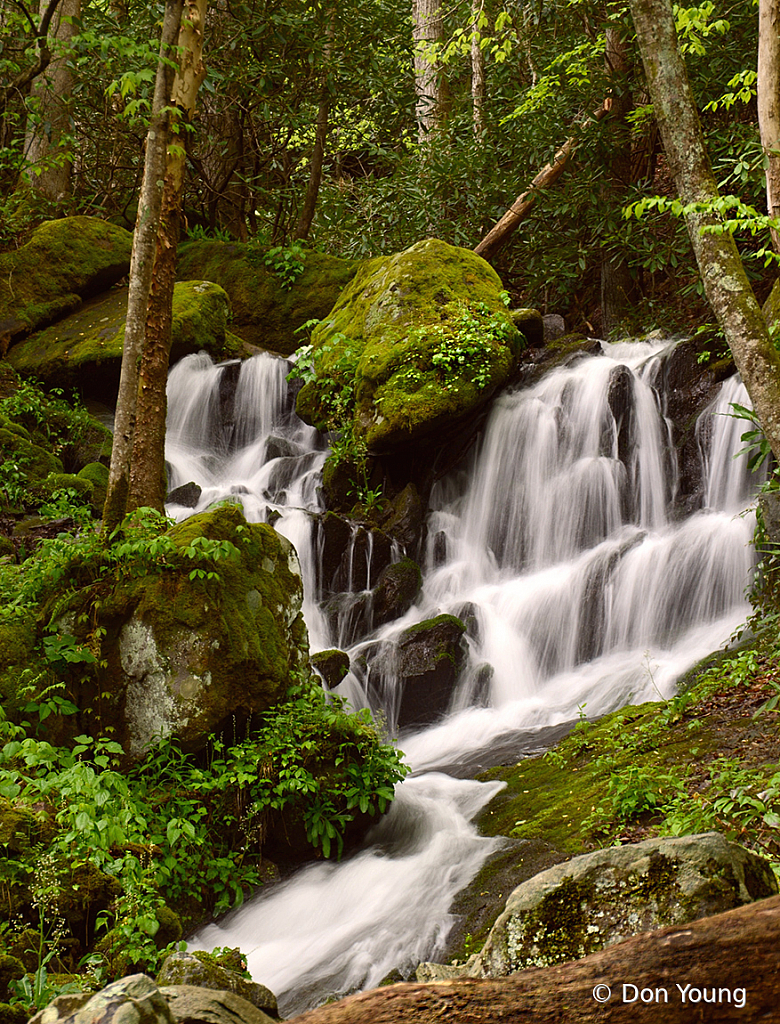 Tremont Water Fall - ID: 15935989 © Don Young