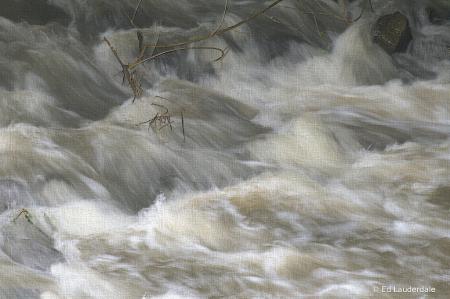 Bayou Rapids