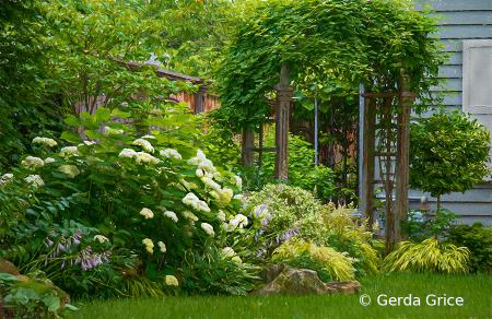 In the Shepard House Garden