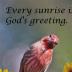 © Theresa Marie Jones PhotoID # 15944012: Every Sunrise...