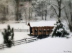 Winter in the cou...