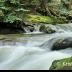 © Krista Cheney PhotoID# 15946782: Cobb Brook, Jamaica, VT