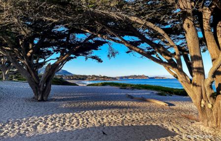 View of Carmel Beach and Point Lobos