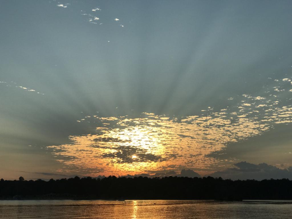 Gorgeous Rays