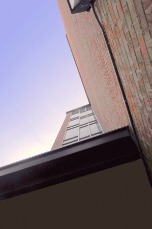 Looking Up