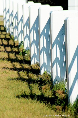 the ups and downs of the fence....