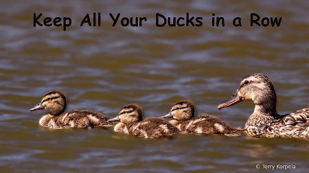 Keep All of Your Ducks in a Row!!