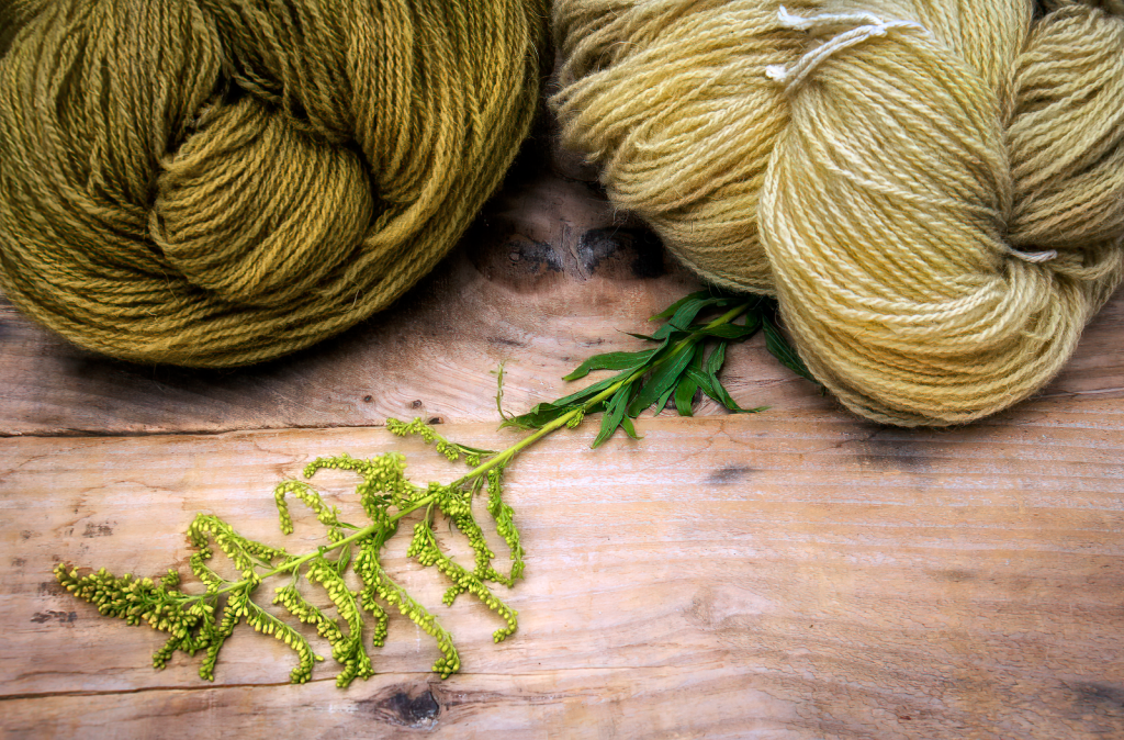 Hand-dyed with Goldenrod