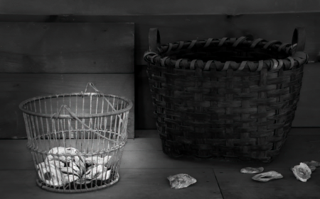 Oyster Shells and Baskets