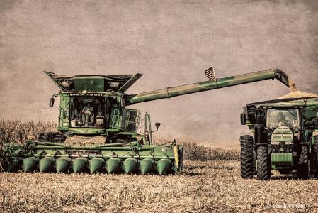 Morton Harvest
