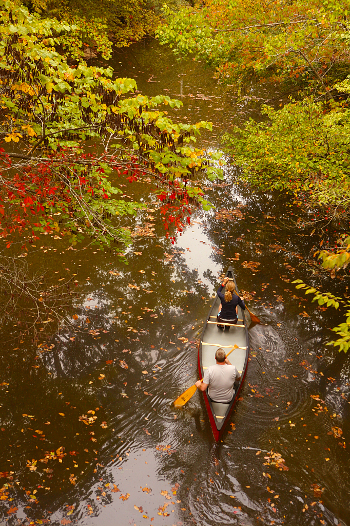 Picture Yourself In A Boat On A River