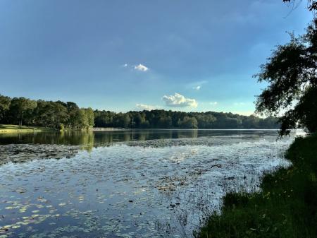 Lake Frank Jackson, 2