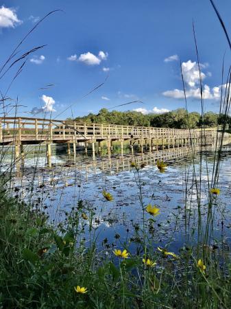 Lake Frank Jackson, Walking bridge