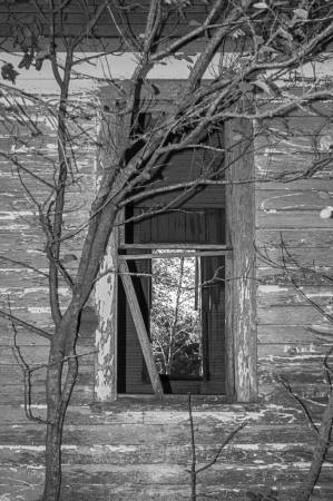 A Window of Time
