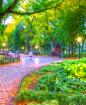 Through the Park