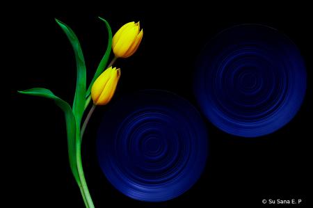 A Simple Floral Design