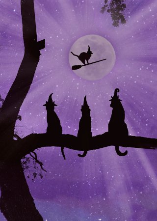 "Wishing you A ""Pur-fect"" Halloween!"