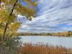 Autumn in Colorad...