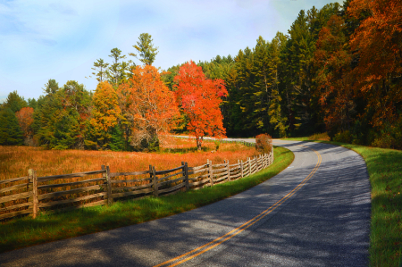 Autumn Turn On The Parkway
