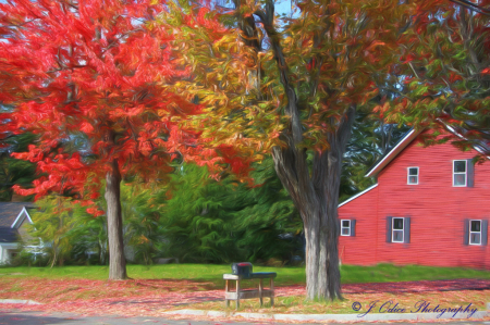 Little Red House on the Corner