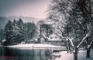 B&W Snowy Day at ...