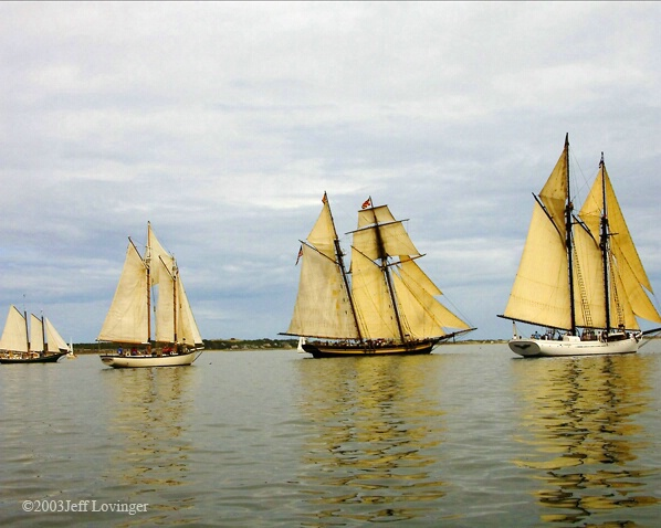 Sails in Line