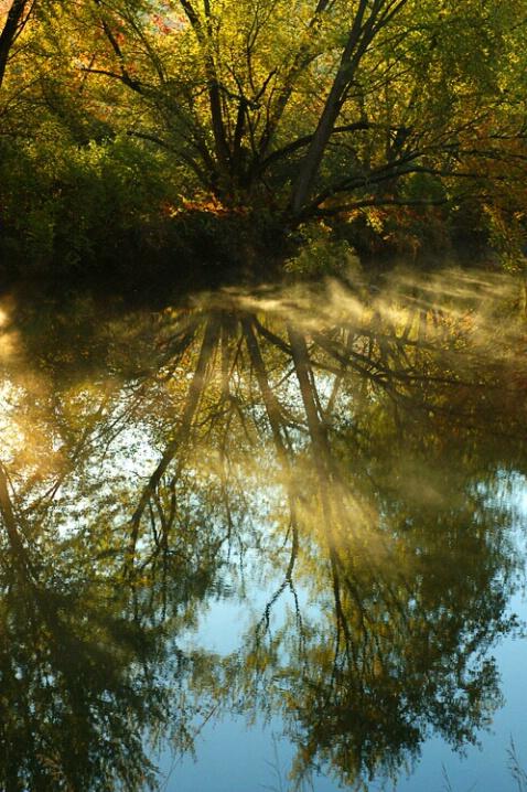 Misty Stream and Sky