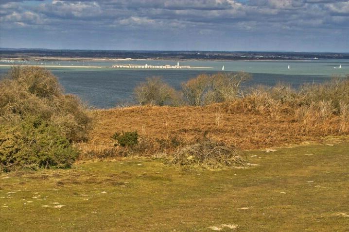 Western Solent