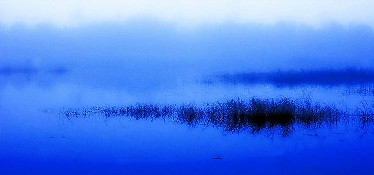 Blue Marsh at Sunrise