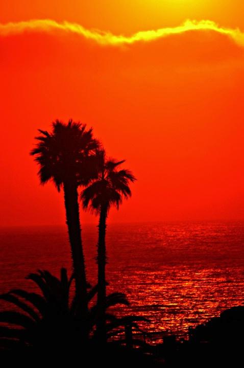 LA Hot Sunset