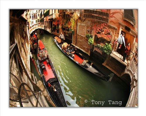 Venice - Along The Canal