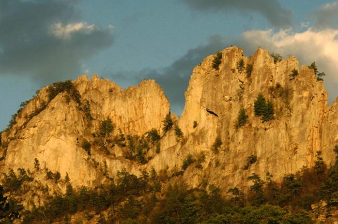 Seneca Rocks Sunset