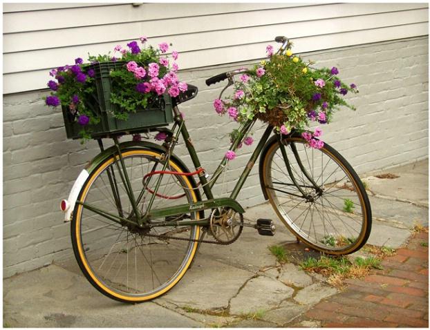 Nantucket Bicycle #125