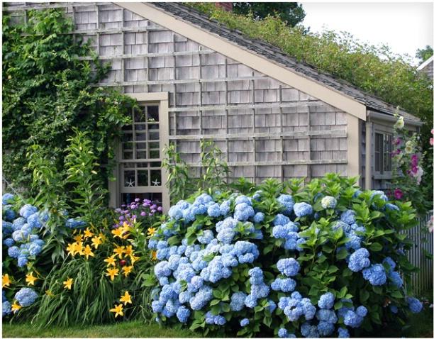 Sconset Cottage #109