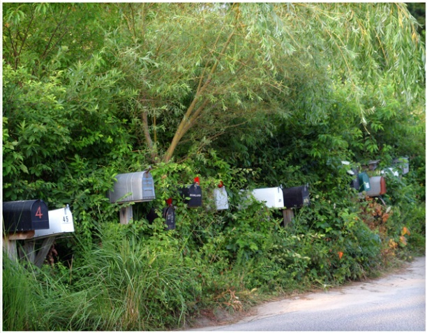 Island Mailboxes #112