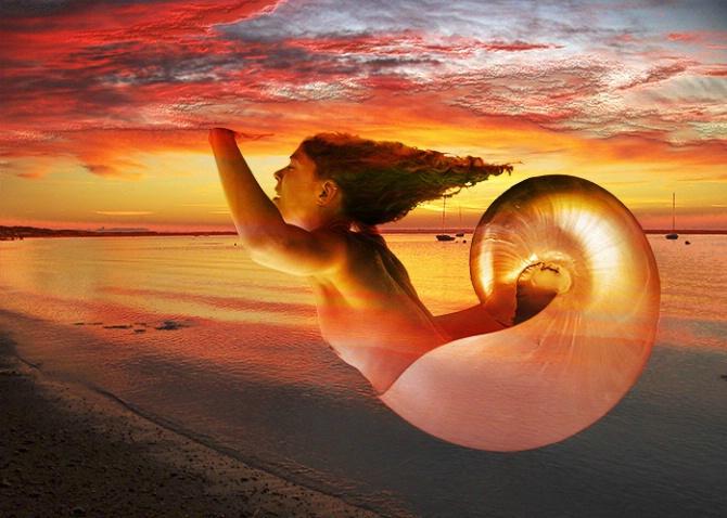 Nautilus Rising
