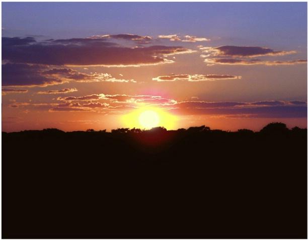 Tom Nevers Sunset #130
