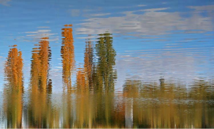 ~Autumn Reflections~