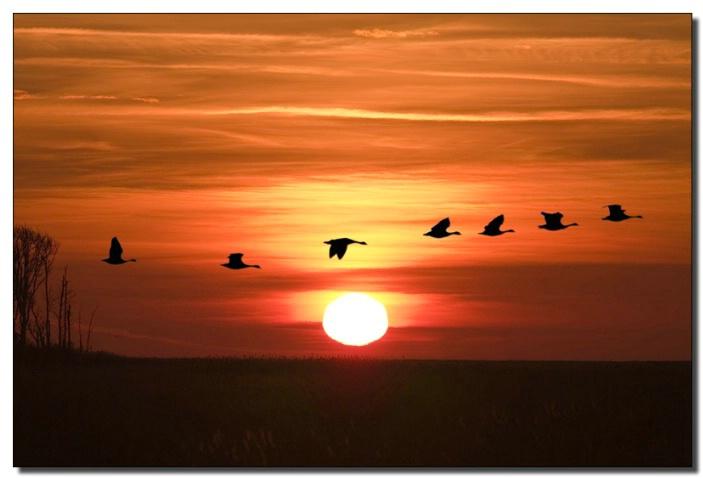 Sunrise at Bombay Hook Delaware