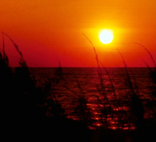 SANIBEL SUNSET(2)