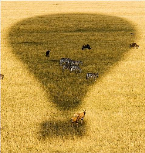 Balloon Ride over the Masai Mara