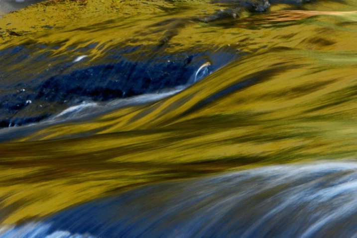 Fall Reflections on the Williams River