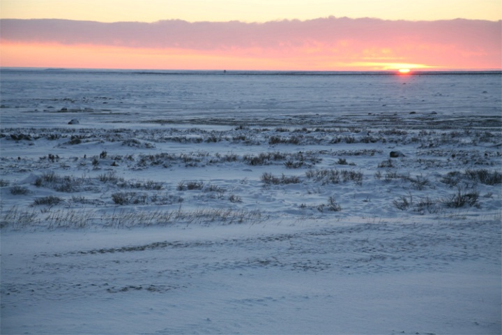 Sunrise on the Tundra at Gordon Point