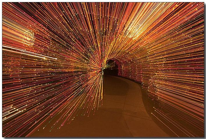 Brookside Gardens - Garden of Light