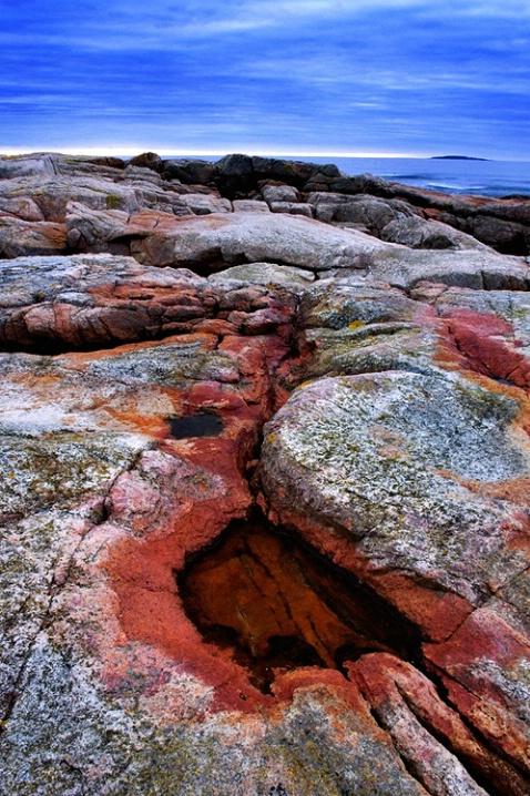 Acadia Rock